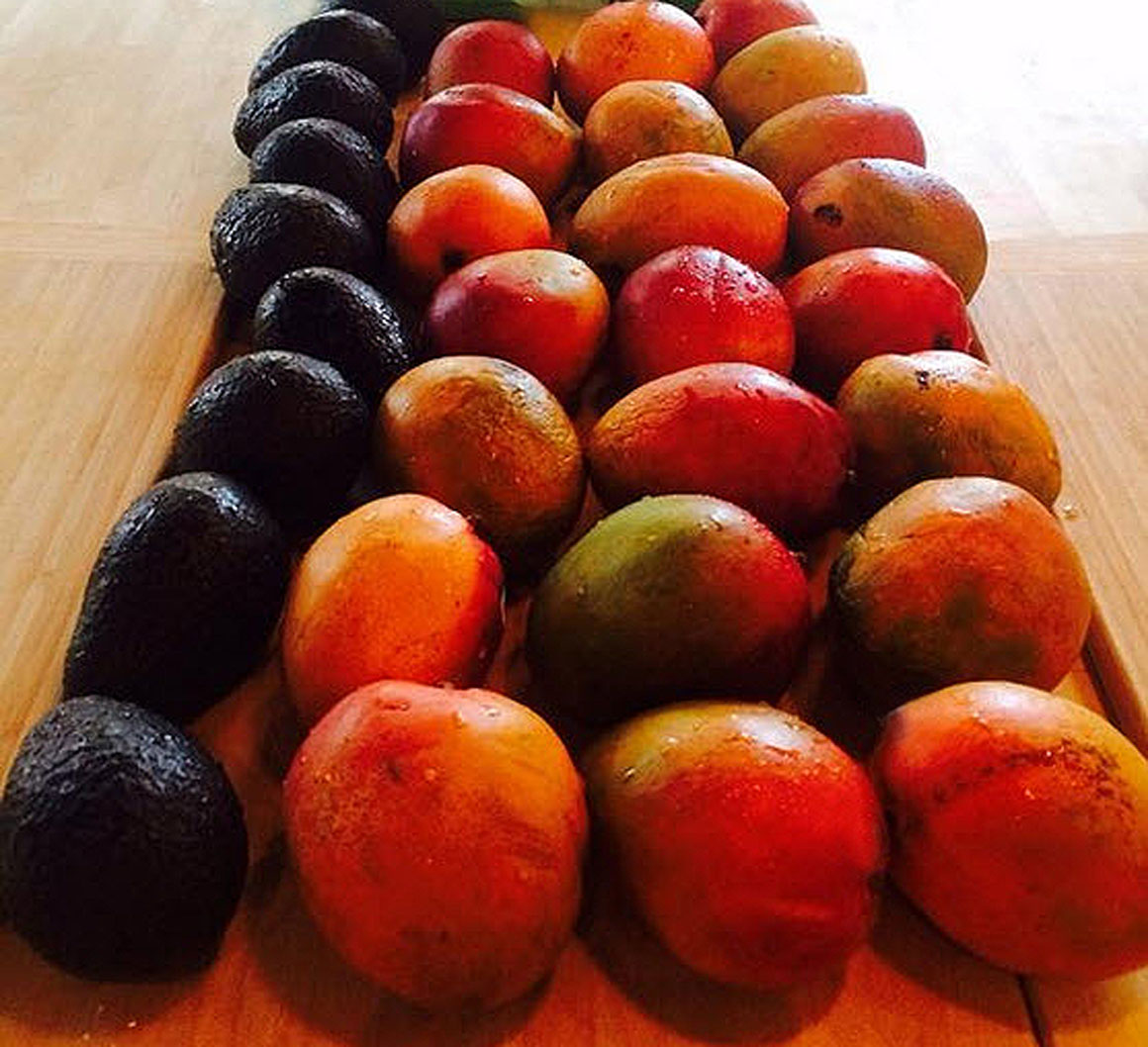 Holy fruit! Photo from St. Lydia's tweet